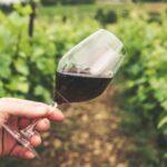 ポルトガルワインにアレンテージョ地方あり!その主な特徴について