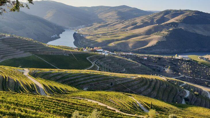 ポルトガルワイン伝統のドウロ地方。常に旅行先に選ばれるその魅力とは?
