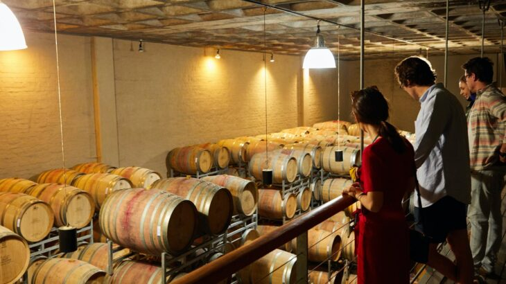 ポルトガルワインのワインツーリズムは魅力満載!その理由を探る!