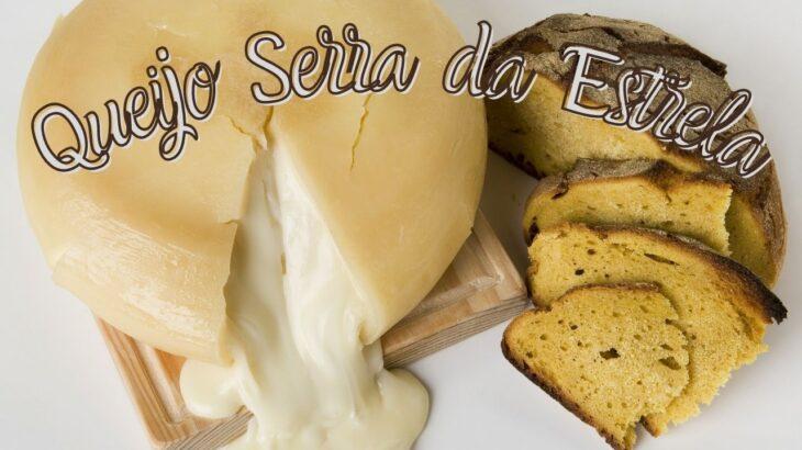 ポルトガルに世界最高峰のチーズあり!一族が支える伝統の味とは!