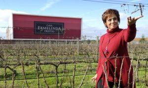 ポルトガル ワイン エルメリンダ